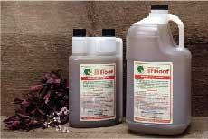 Natural Herbal Solutions